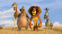 Melman the giraffe (David Schwimmer), Gloria the hippo (Jada Pinkett Smith), Alex the lion (Ben Stiller) and Marty the zebra (Chris Rock) in