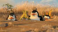 Penguins Kowalski (Chris Miller), Rico, the Skipper (Tom Mcgrath) and Private (Christopher Knights) in