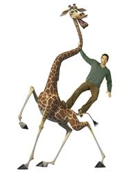 David Schwimmer voices Melman the giraffe in