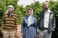 Tarik Kopty as Abu Hassam, Hiam Abbass as Salma Zidane and Ali Suliman as Ziad Daud in