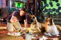 "Director Tom Dey, Marmaduke and Jezebel on the set of ""Marmaduke."""