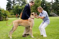 """Lee Pace as Phil Winslow, Marmaduke and William H. Macy as Don Twombly in """"Marmaduke."""""""