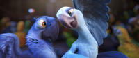 Blu voiced by Jesse Eisenberg and Jewel voiced by Anne Hathaway in