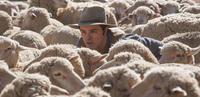 "Seth MacFarlane in ""A Million Ways to Die in the West."""