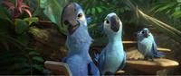 Blu voiced by Jesse Eisenberg, Jewel voiced by Anne Hathaway and Carla voiced by Rachel Crow in