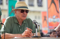 Alan Arkin as Ray in