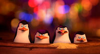 Kowalski voiced by Chris Miller, Skipper voiced by Tom McGrath, Rico voiced by Conrad Vernon and Private voiced by Christopher Knights in