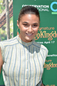 Emmanuelle Chriqui at the California world premiere of