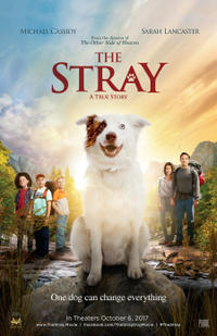 The Stray poster art