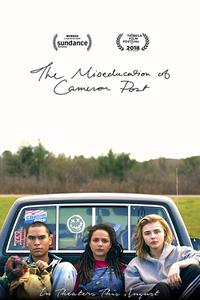 The Miseducation Of Cameron Post poster art