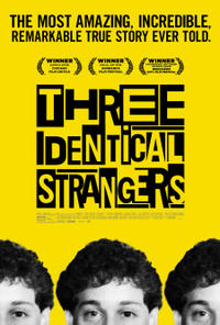 Three Identical Strangers poster art