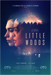 Little Woods poster art