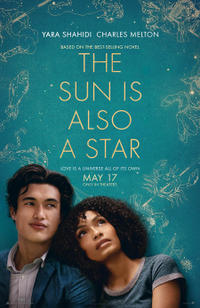 The Sun is Also a Star poster art
