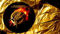 Add to Your Mockingjay Pin Collection