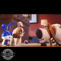 THE SECRET LIFE OF PETS 2 (JUN. 7)