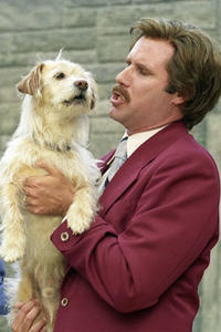 Anchorman: The Legend of Ron Burgandy