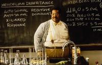9. The Nutty Professor