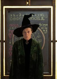 Top Harry Potter Villains and Heroes