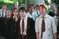 3. The Harry Potter Franchise