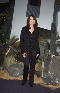 Kim Delaney at the premiere of