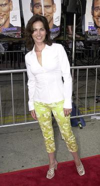 Kim Delaney at the premiere of the