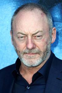 Liam Cunningham at the premiere of HBO's