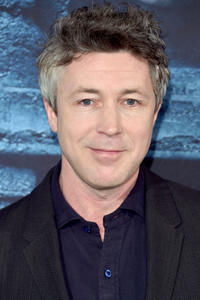 Aidan Gillen at the premiere of HBO's