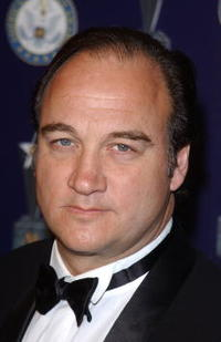 Jim Belushi at the 7th Annual American Veteran Awards.