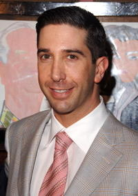 David Schwimmer at the Broadway opening of