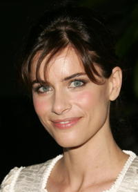 Amanda Peet at the N.Y. premiere of