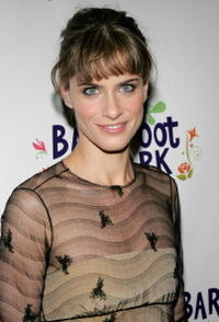 Amanda Peet at the after party for the play opening night of