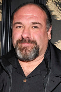James Gandolfini at the after party for a screening of