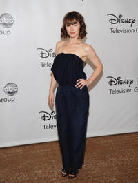 Karine Vanasse at the TCA 2011 Summer Press Tour in California.