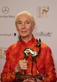 Jane Goodall at the Bambi 2010 Award Winners Board in Germany.