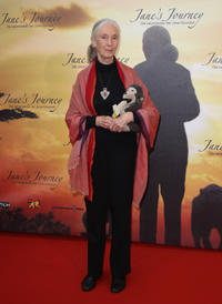 Jane Goodall at the Germany premiere of