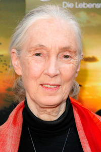 Jane Goodall at the photocall of