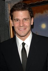 David Boreanaz at the 14th Annual Diversity Awards Gala.