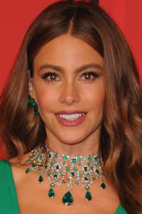 Sofia Vergara at the 2013 CFDA Fashion Awards in N.Y.