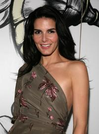 Angie Harmon at the Mercedes-Benz Fashion Week Fall 2008.