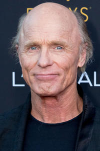 Ed Harris at the Television Academy Honors Emmy Nominated Performers Recognition in Beverly Hills, California.