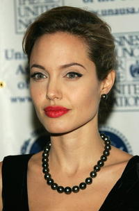 Angelina Jolie at the United Nations Association Annual Dinner.