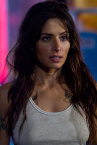 Sarah Shahi as Lisa in