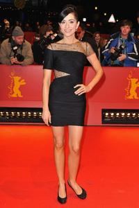 Zrinka Cvitesic at the premiere of