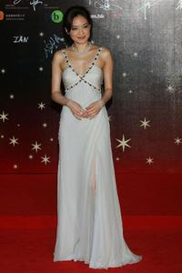 Qi Shu at the 26th Hong Kong Film Awards.