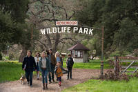 Matt Damon as Benjamin Mee, Carla Gallo as Rhonda Blair, Scarlett Johansson as Kelly Foster, Patrick Fugit as Robin Jones, Elle Fanning as Lily Miska, Maggie Elizabeth Jones as Rosie and Colin Ford as Dylan in ``We Bought a Zoo.''