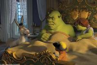 Shrek (Mike Myers) and Fiona (Cameron Diaz) are not exactly thrilled to be awoken by their old friends Donkey (Eddie Murphy) and Puss In Boots (Antonio Banderas) in