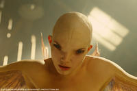 Delphine Chaneac as Dren in