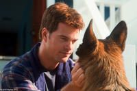 Chris O'Donnell as Shane and Diggs in