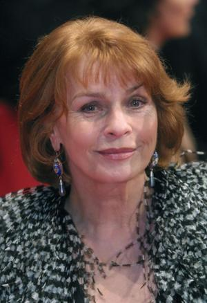 Senta Berger as Widow