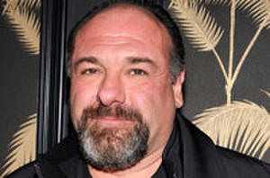 The Final Three Projects of James Gandolfini
